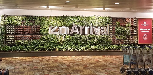 Arrival hall Singapore Airport