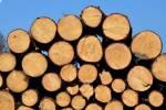 lemn fasonat