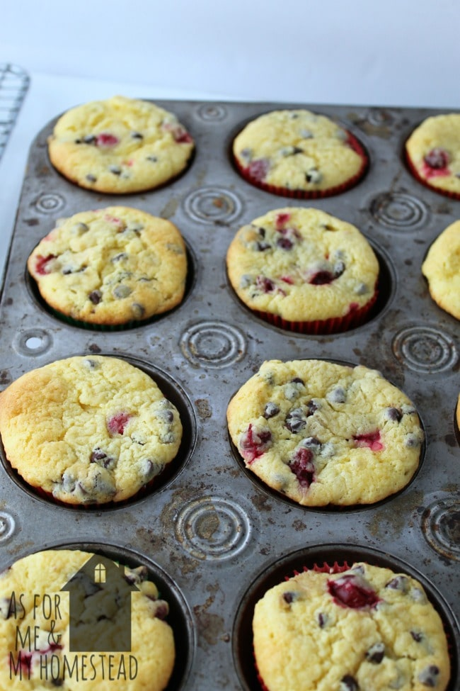 Packed full of flavor, these chocolate chip cranberry cream cheese muffins will have everyone coming back for more!
