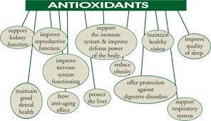 Manfaat Anti Oksidan Supaya Tetap Sehat
