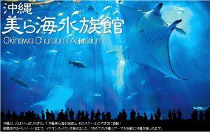 Indahnya Aquarium Churaumi di Okinawa, Banyak Pengetahuan dan Nyata