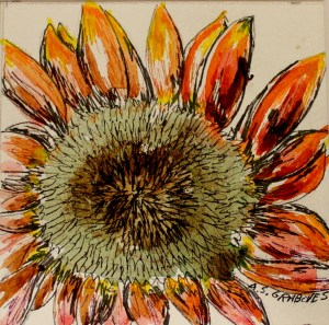 """Sunflower, watercolor and ink, matted and framed, 6""""x6""""   $50"""