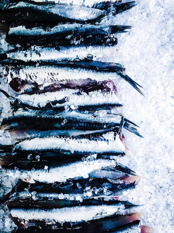 image-wordpress-google-anchois-au-sel-maison-asgreenaspossible