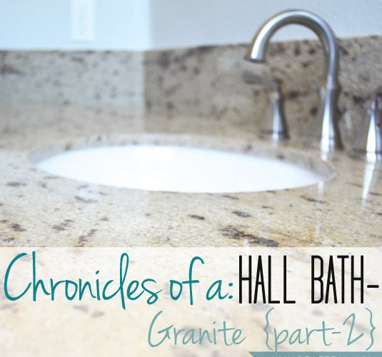 Hall Bath Chronicles- Granite Pt2