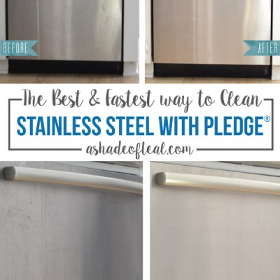 The BEST & Fastest way to Clean Stainless Steel with Pledge®