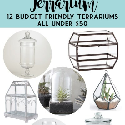 Build your own Terrarium with these 12 Budget Friendly Terrariums!