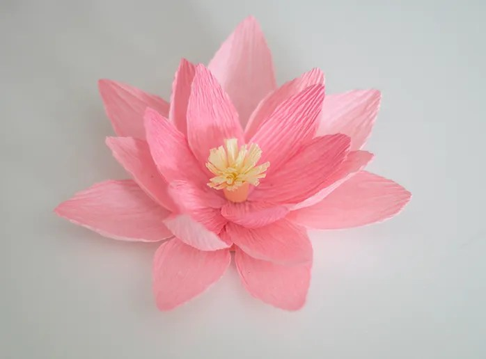 Crepe Paper Water Lily Tutorial | ashandcrafts.com