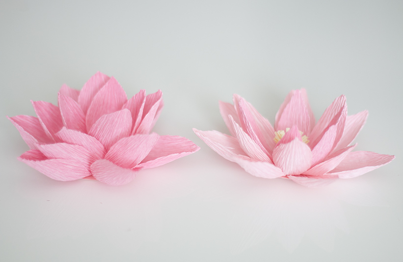 Water lily paper flower tutorial | Paper flower tutorial, Paper ... | 533x821