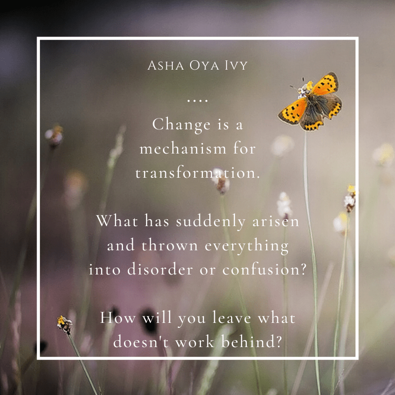 change is a mechanism for transformation. what has suddenly arisen and thrown everything into disorder or confusion? how will you leave what doesn't work behind?