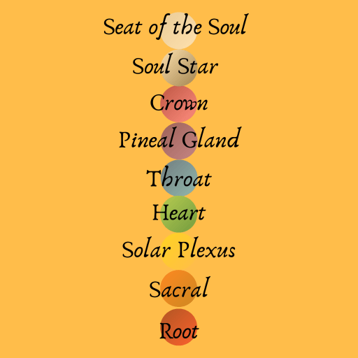 root, sacral, solar plexus, heart, throat, pineal gland, crown, soul star, and seat of the soul chakras