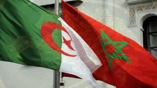 مسؤول جزائري: المغرب مرعوب من قرار أوروبي سيصدر يوم 29 سبتمبر