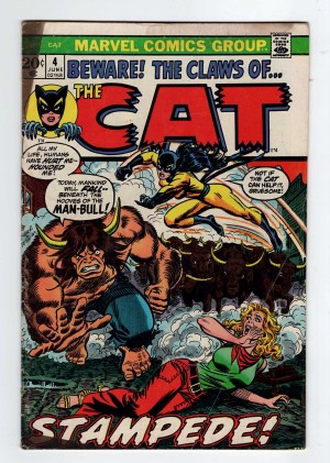 The Cat 4—Front Cover