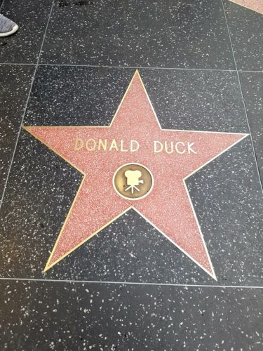 Donald Duck Walk of Fame, Hollywood Los Angeles