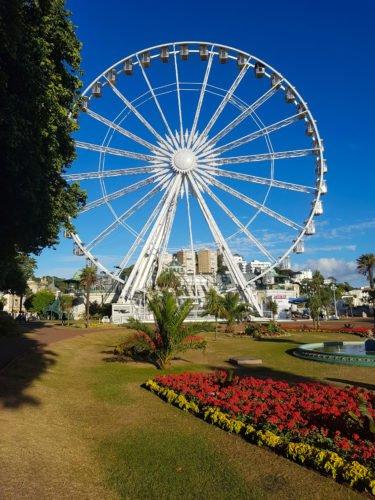 Big wheel with flower garden