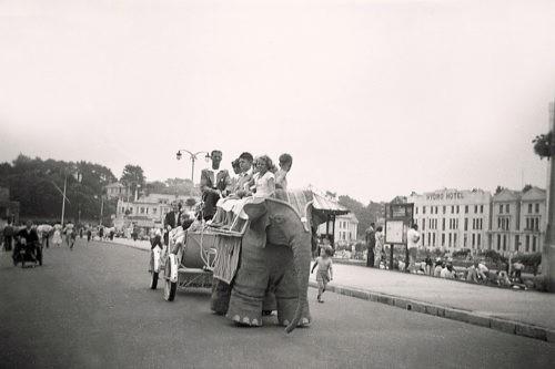 Jenny II the Elephant Ride Paignton Sea Front circa 1950 Paignton History