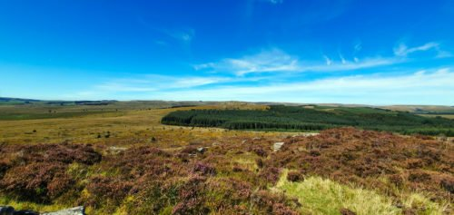 Overlooking moorland, forest and Blue skies