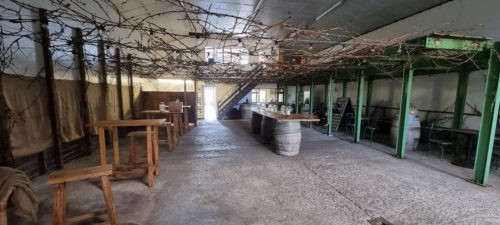 Sharpham Wine 2021 Ashprington Totnes 1