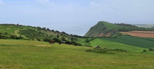 Sidmouth Devon 2020 18