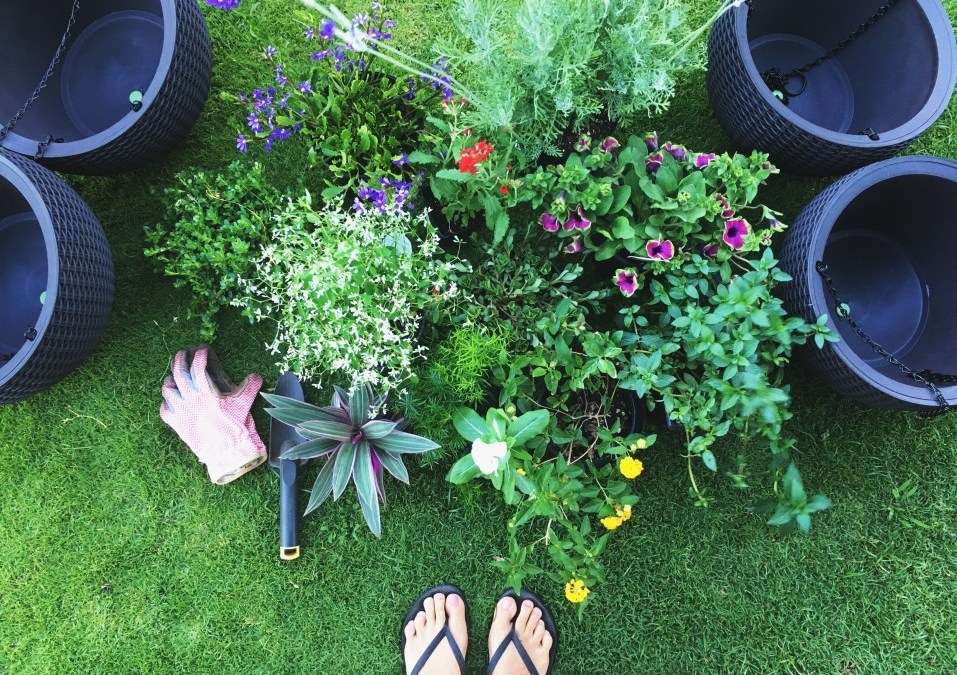 Ways to Recycle and Repurpose Items When Decorating Your Yard