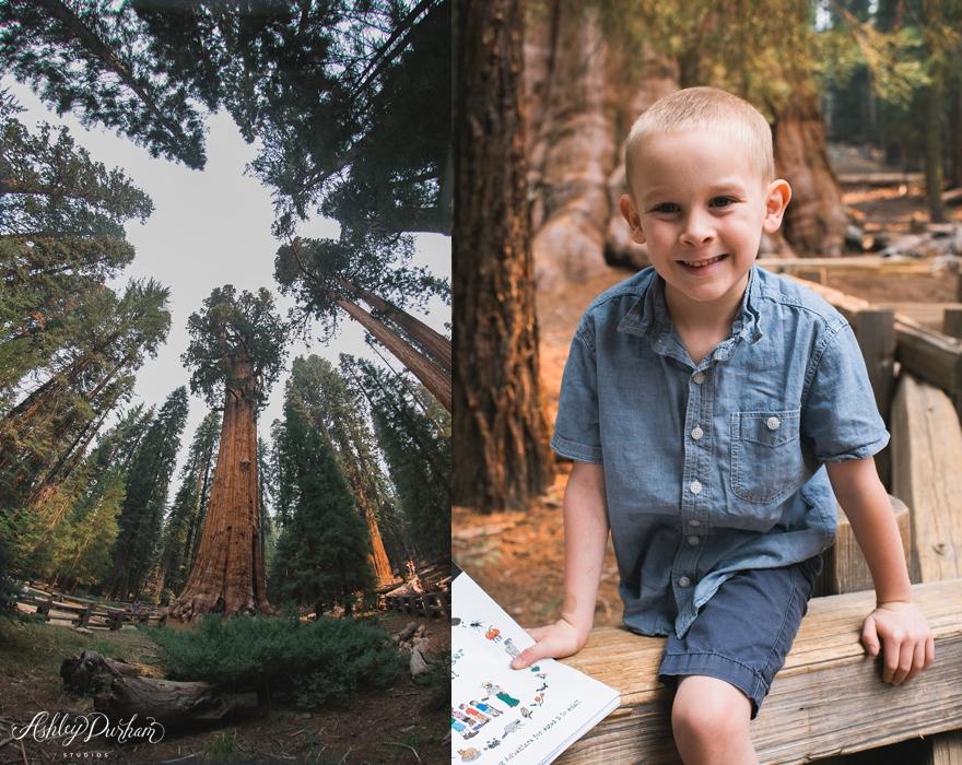 sequoia rv trip summer 2015_0013