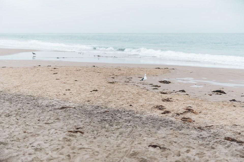 beach winter engagement session, laguna beach engagement photos, crystal cove state beach engagement photos, california beach engagement photos, beach in the winter, laguna beach engagement photographer, laguna beach wedding photographer