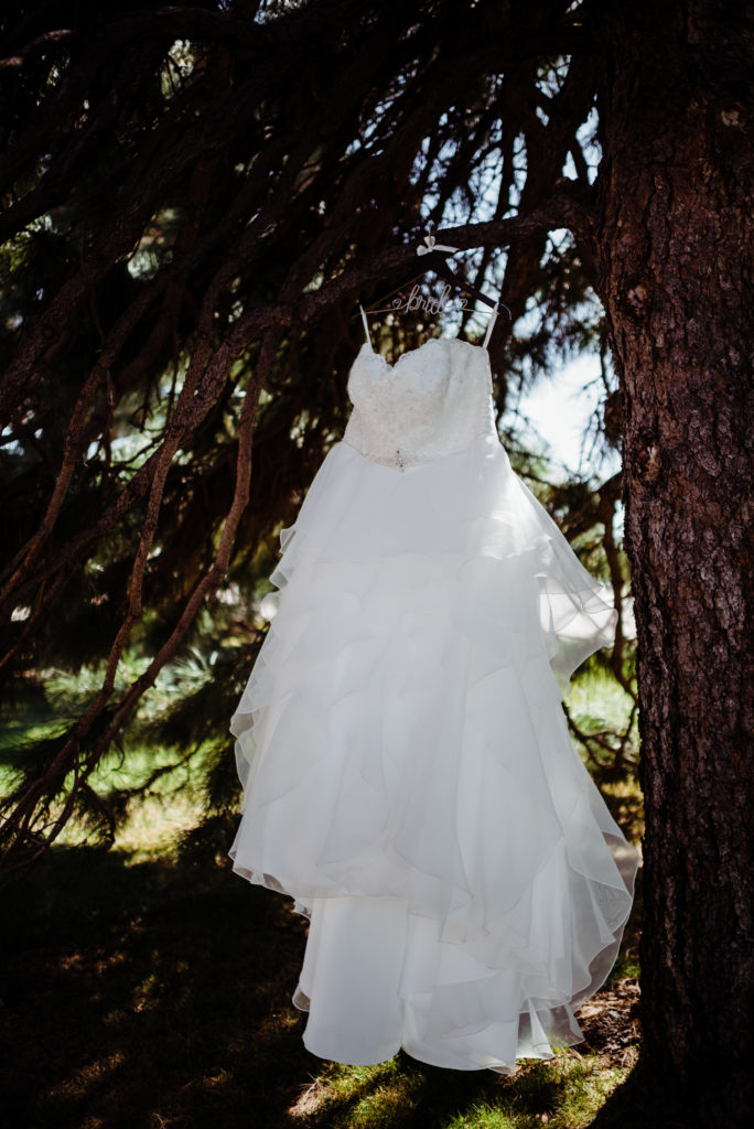 wedding gown in a tree