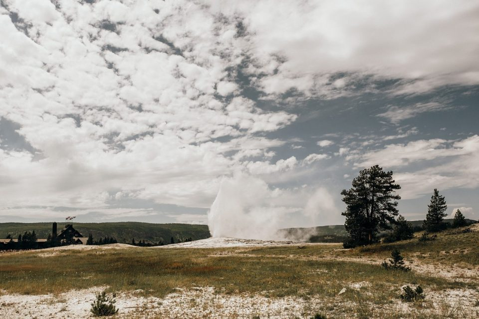 our summer vacation to yellowstone national park