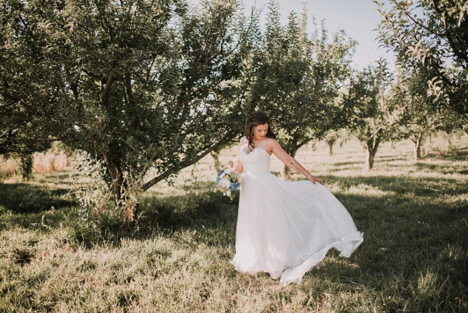 bride twirling in an apple orchard