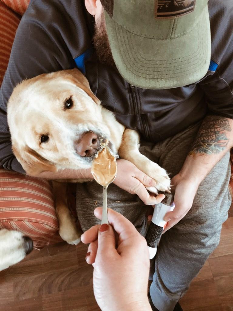 dog mom hack for trimming dog nails