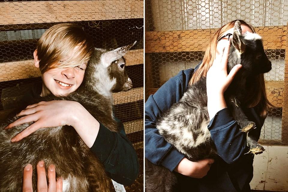 teenagers hugging goats