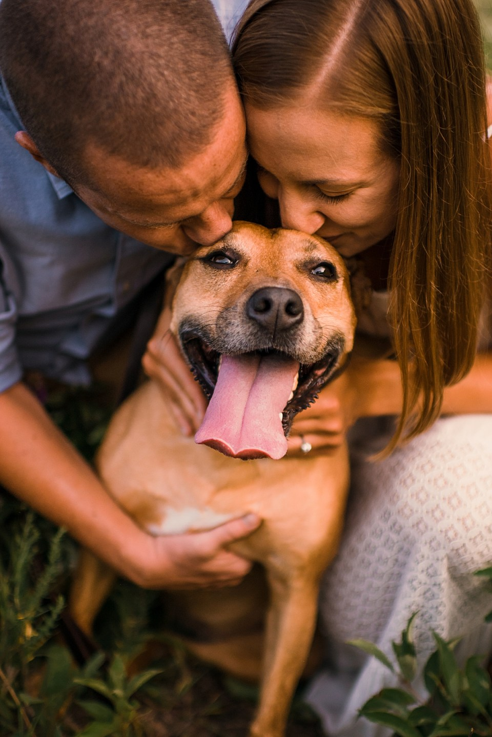 couple kissing dog at engagement session