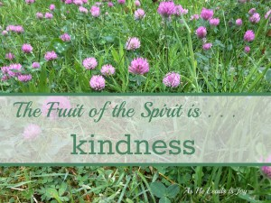 The Fruit of the Spirit is Kindness