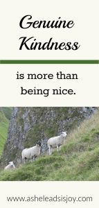 Genuine Kindness is more than being nice. Learn 4 principles of kindness.