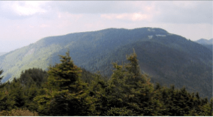 Northeast: Mt. Mitchell. Wikipedia.