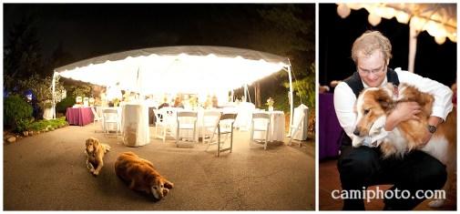 camiphoto_asheville_wedding_0042