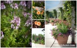 camiphoto_nc_arboretum_wedding_0002