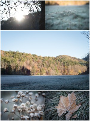 A frosty morning view at Cataloochee Valley.
