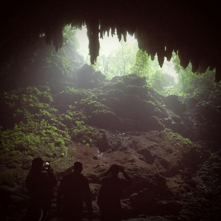 Rio Camuy Caves Park