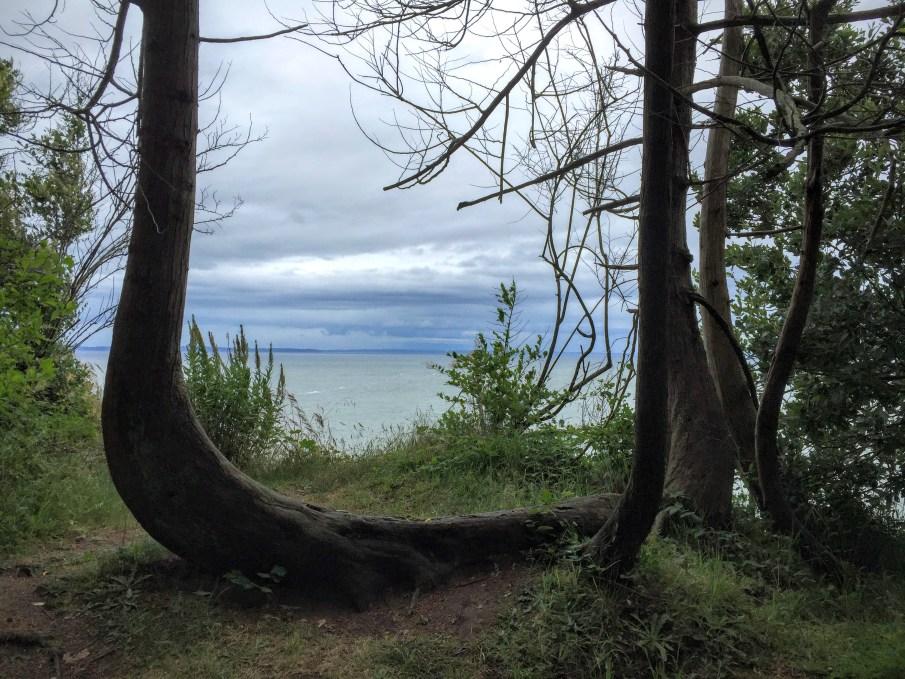 A nice hike at Pt. Roberts