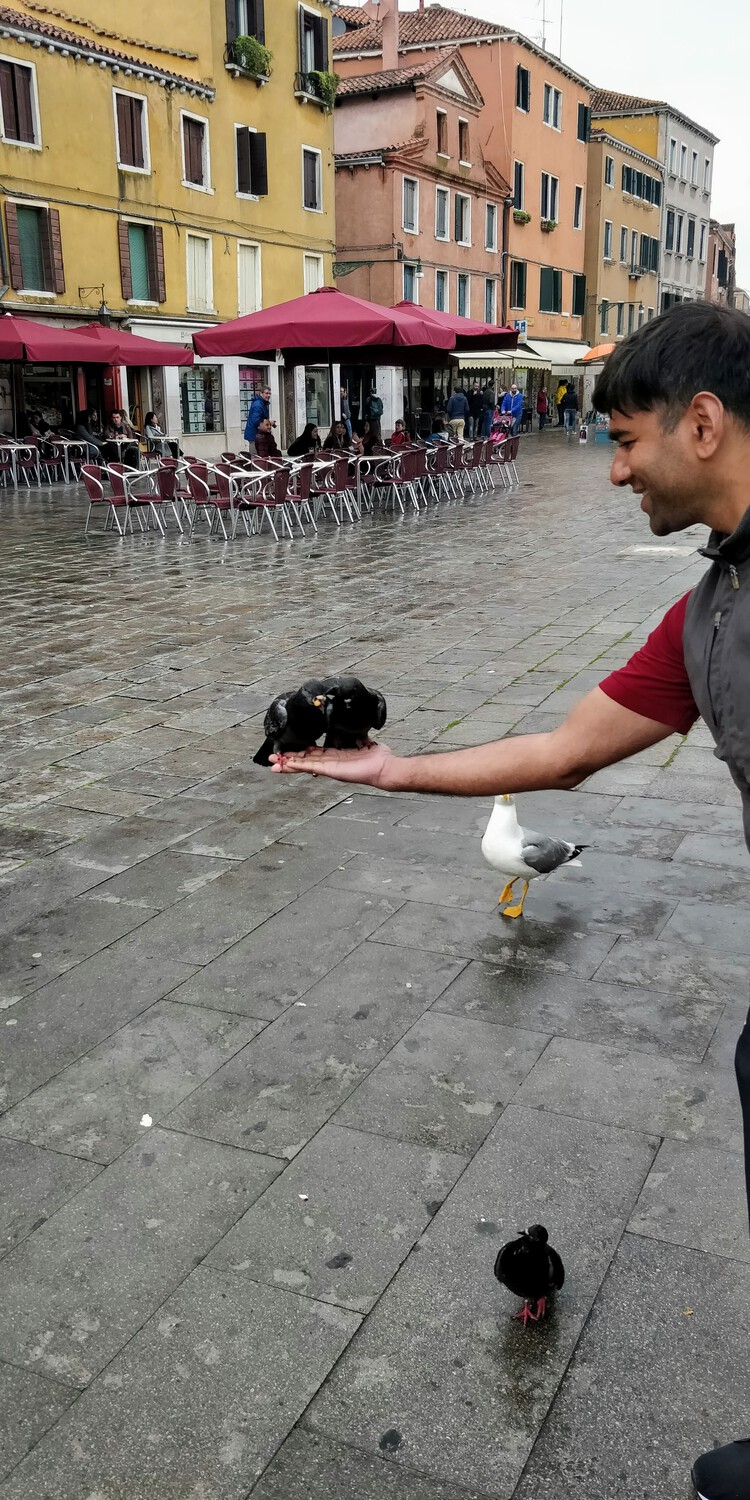 Feeding pigeons in St. Marks