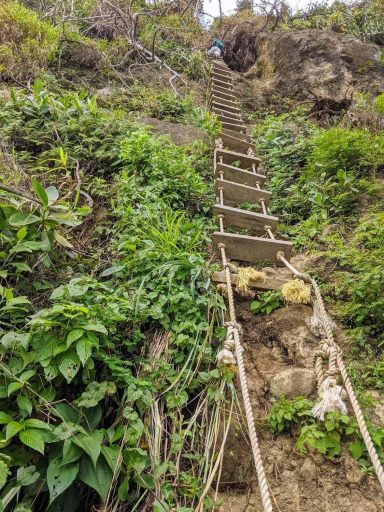 Pathway to Wavine Cyrique Falls