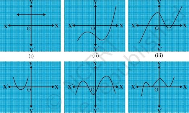 Exercise 2.1 Class 10 Maths