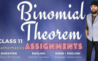 Ch08. Binomial Theorem Assignments