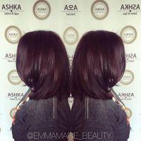 AVEDA Hair Color Ingredients - ASHKA SALON & SPA