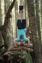 Dave's oldest friends might find it hard to believe he'd be demonstrating a full on headstand on top of a stump in the forest, after  four years of yoga there is now photographic proof.