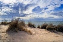 Beach Grass & Sky - Silver Lake State Park