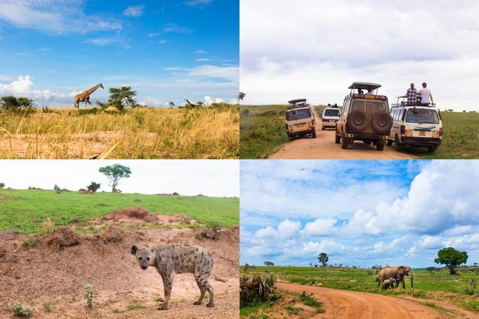 Murchison Falls Itinerary