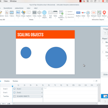 Scaling Objects in Articulate Storyline 360