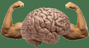 muscleBrain1-300x161