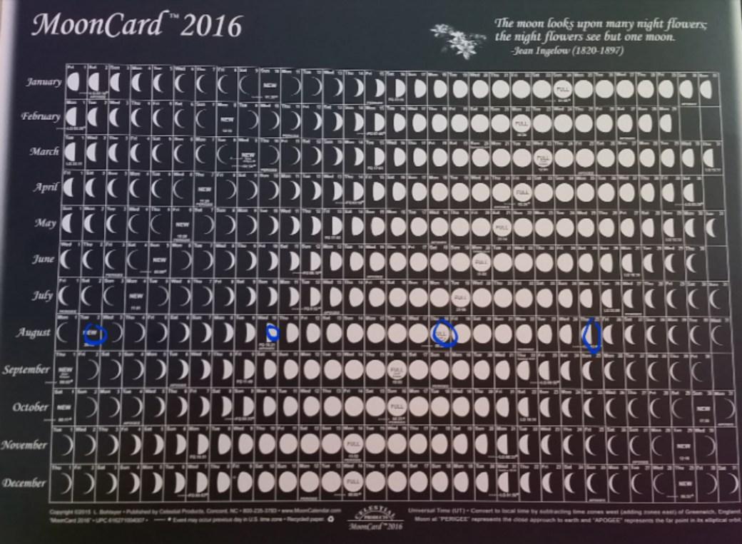 2016-06-21 11.58.08.jpg